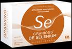 granions_de_selenium.png