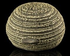 Concretion chine.jpg