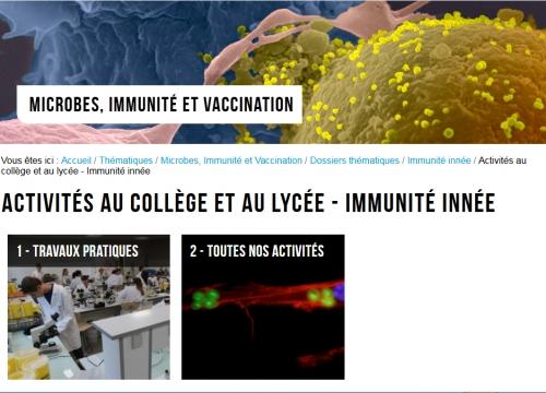 Immunité collège.jpg