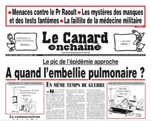 Canard.JPG