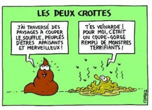 probiotiques.jpg